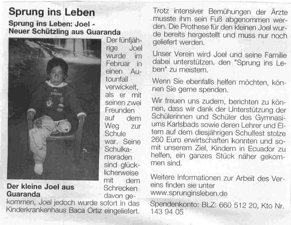 Amtsblatt201108Joel kl